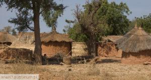Congrès sur la Miséricorde Divine au Burkina Faso