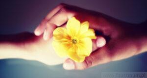 Donner et recevoir la miséricorde